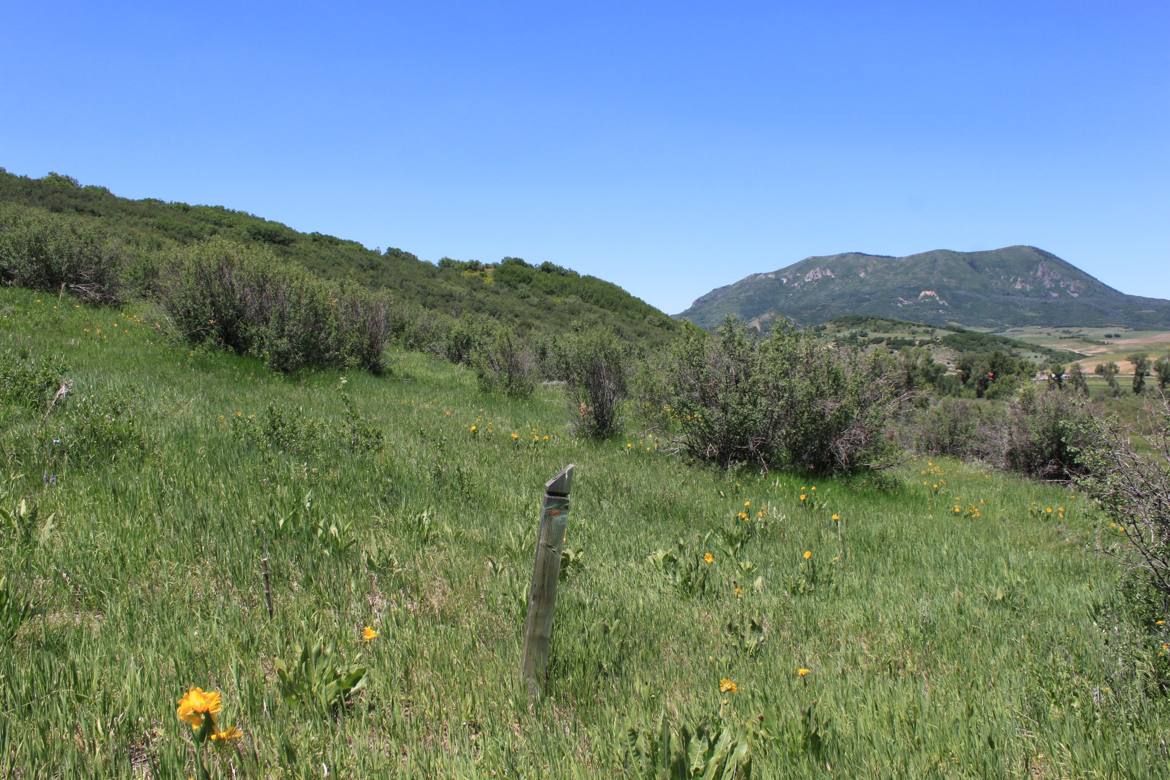 Terrain pour l Vente à Marabou Homestead C3 26705 Wild Iris Path Steamboat Springs, Colorado, 80487 États-Unis