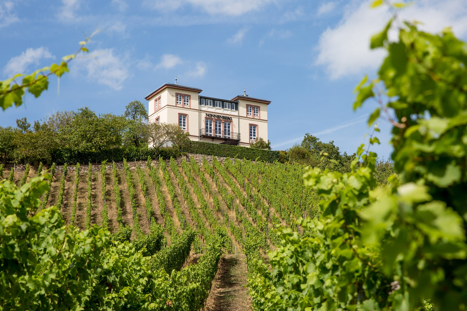 sales property at Beautiful Villa in Late Classicistic Style at the Top of the Hillside Vineyard