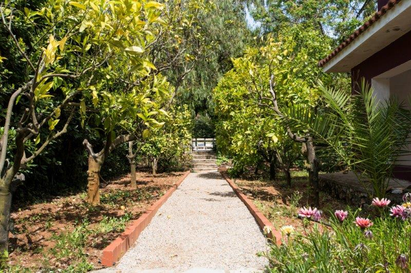 Additional photo for property listing at Unique villa with private garden and swimming pool Capoliveri, Livorno Italy