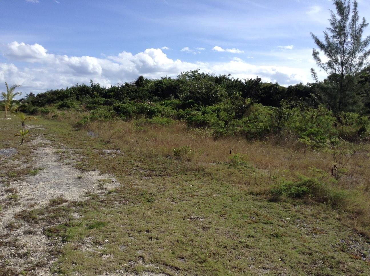 Additional photo for property listing at Ole Kerr #3 Bahama Palm Shores, Abaco Bahamas