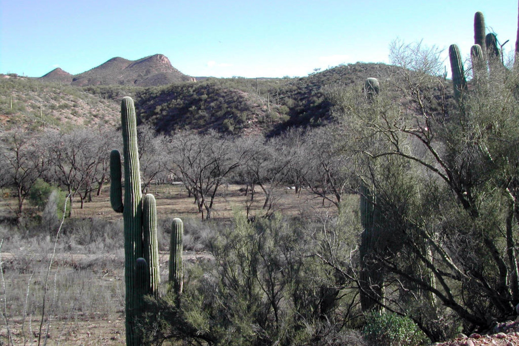 Terreno para Venda às Private 20 Fenced Acres On Aravaipa Creek With Pecan Trees and a Well 88725 E Aravaipa Vistas #2 Winkelman, Arizona 85192 Estados Unidos