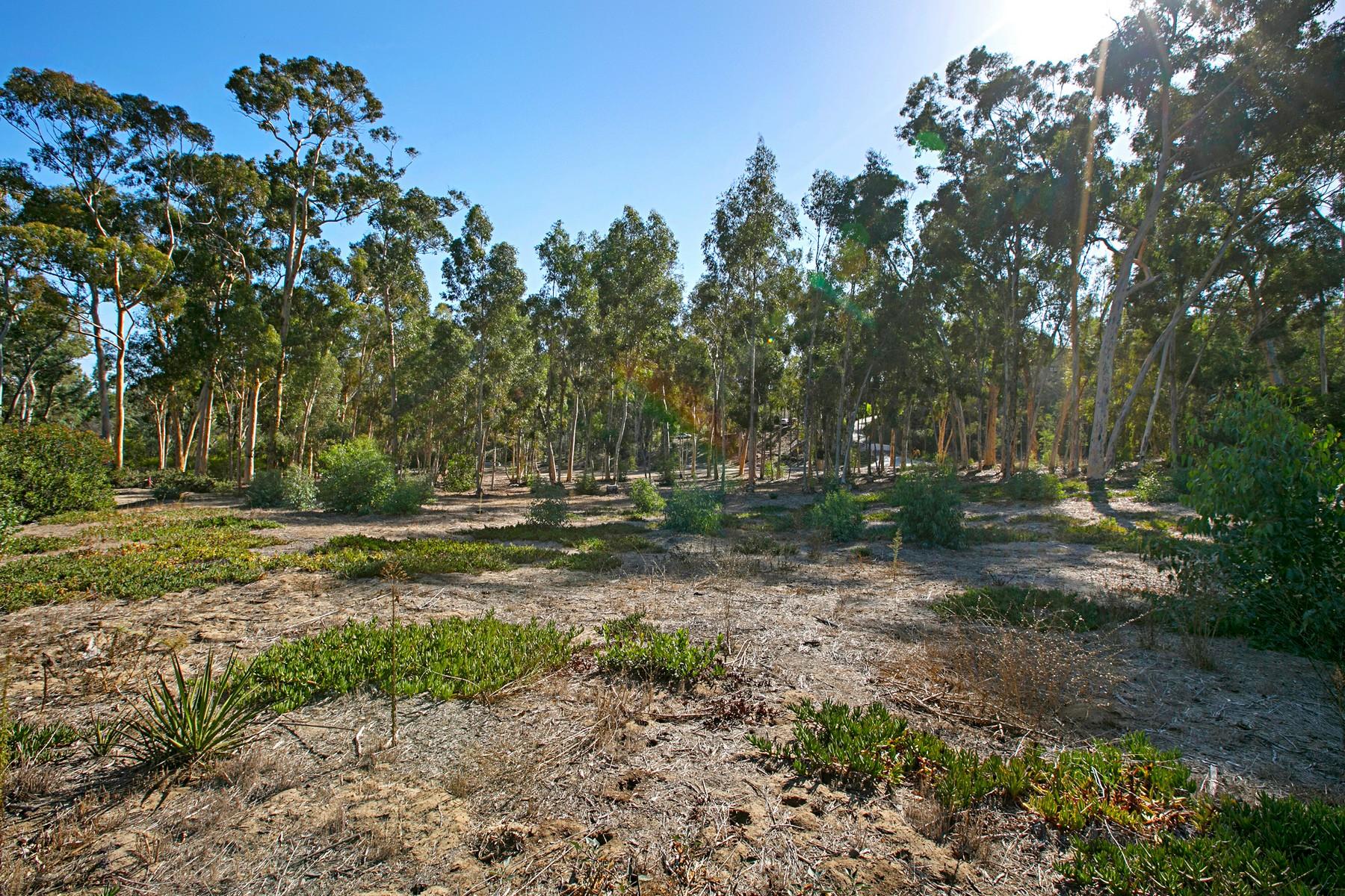 Terreno por un Venta en 16104 Via Del Alba Rancho Santa Fe, California, 92067 Estados Unidos