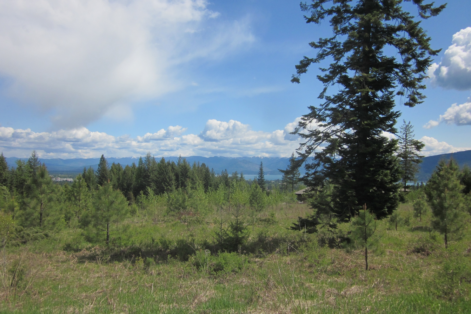 Land for Sale at Hauptli 53 Ravenwood Lane Sandpoint, Idaho, 83864 United States