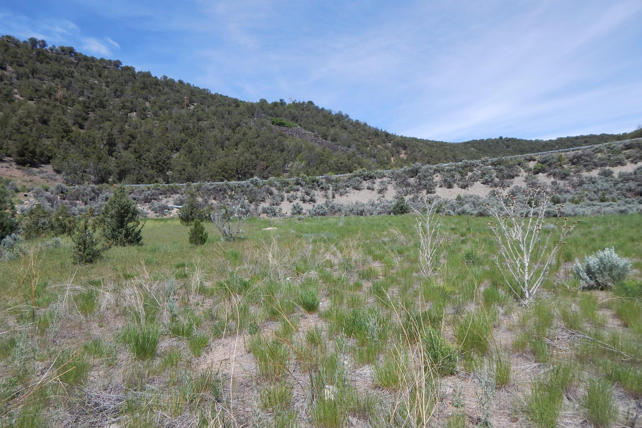 Land for Sale at Lot 17 Pinyon Mesa TBD Sage Meadow Road Glenwood Springs, Colorado, 81601 United States