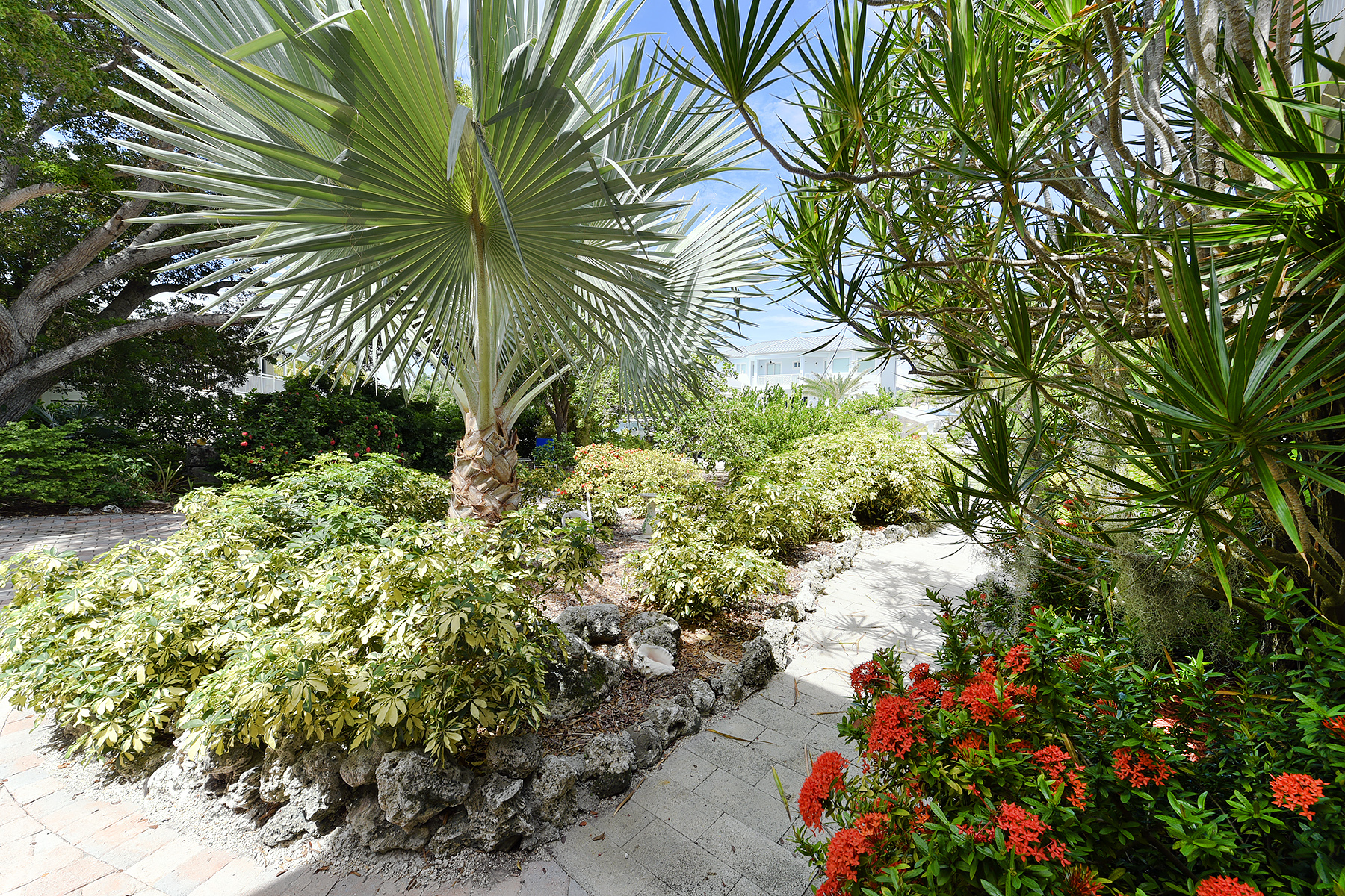 Additional photo for property listing at Exclusive Oceanfront Location 213 Plantation Drive Plantation Key, Φλοριντα 33070 Ηνωμενεσ Πολιτειεσ
