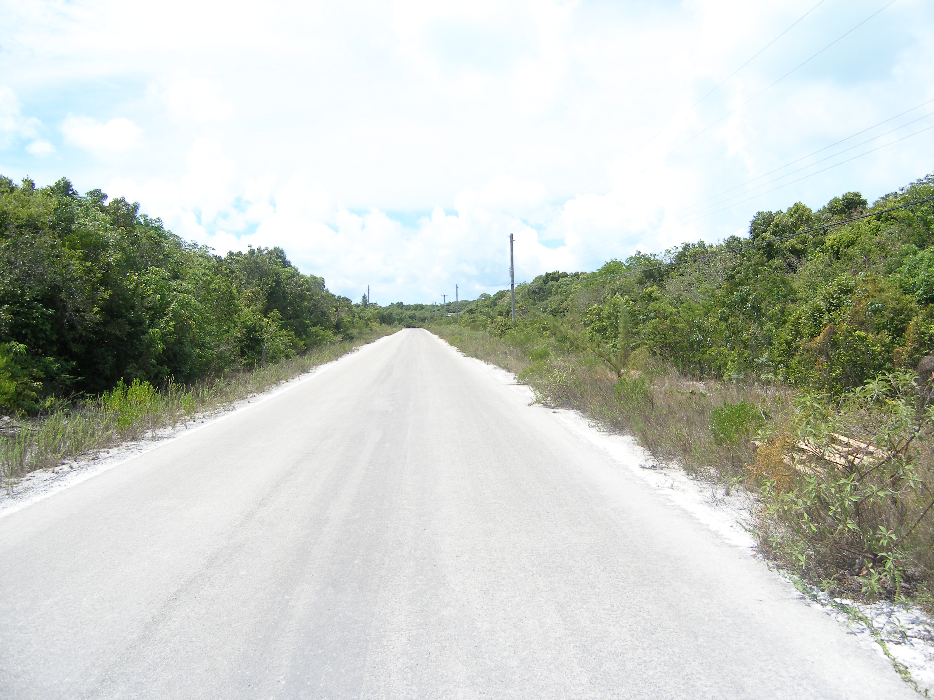 Additional photo for property listing at Lot 84 Rock Sound, Eleuthera Bahamas