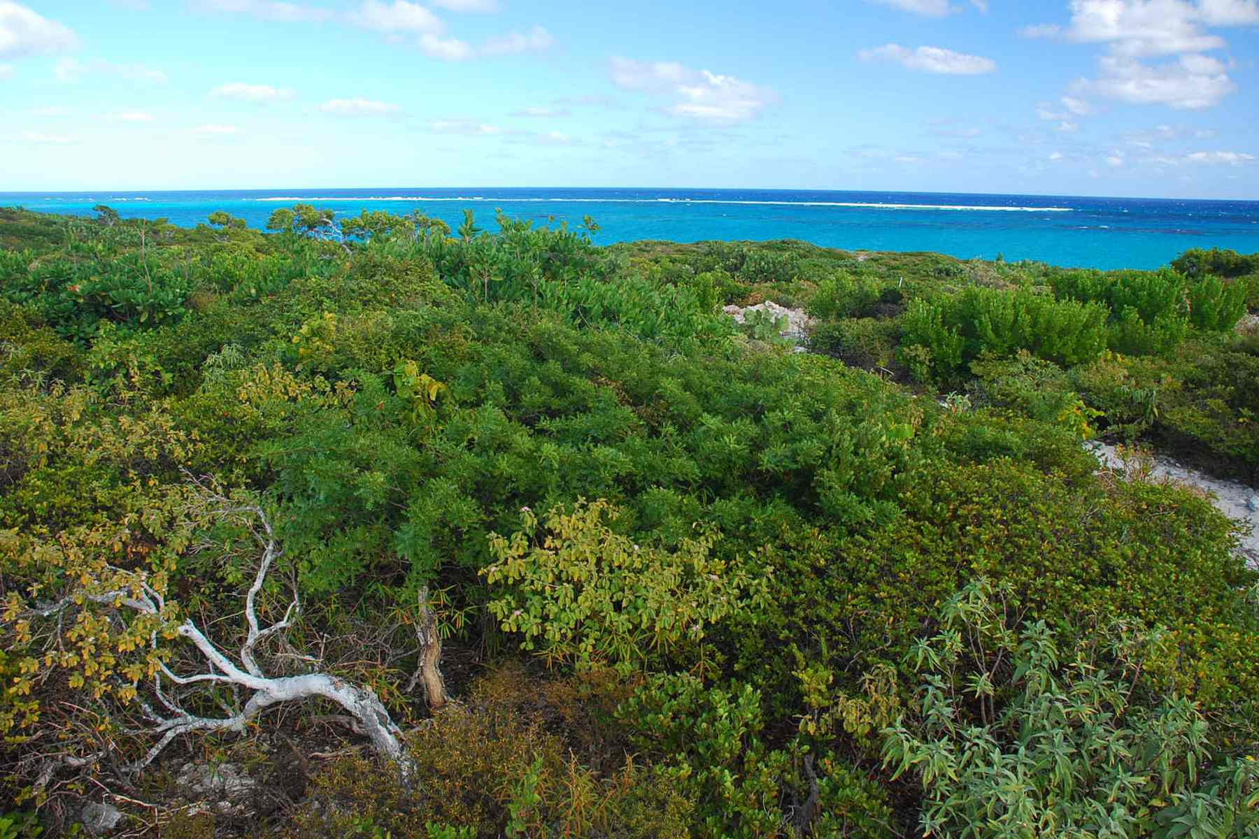 Land for Sale at Oceanfront Lot 1206 Sailrock, Turks And Caicos Islands