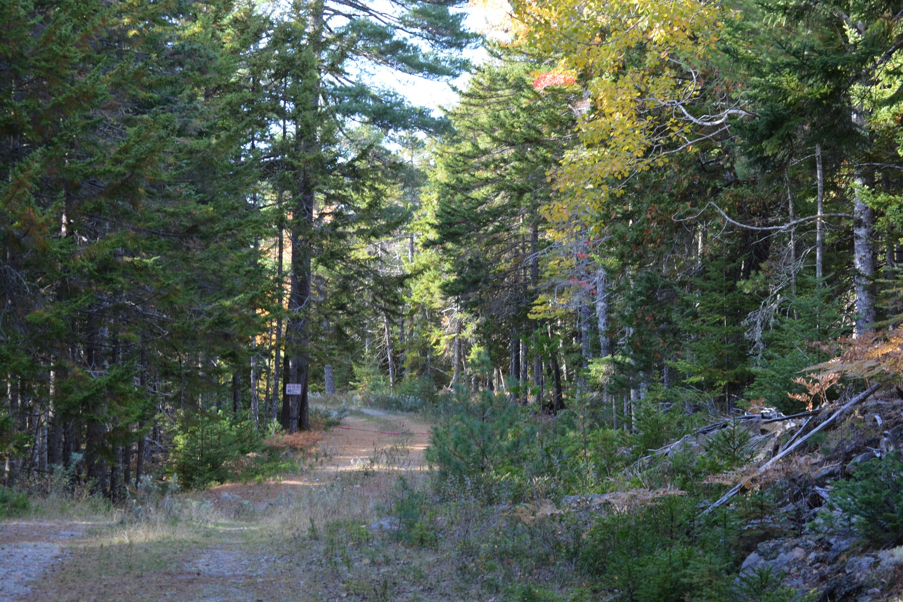 Terrain pour l Vente à The Hemlocks Lot 1 Hemlock Lane Mount Desert, Maine, 04660 États-Unis