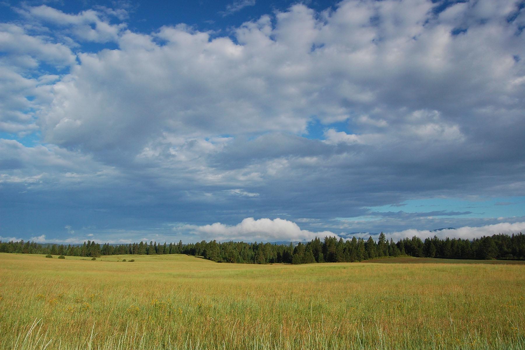 Casa Unifamiliar por un Venta en NNK Headlands Dr Lot 4 Lot 4 Headlands Dr Harrison, Idaho, 83833 Estados Unidos