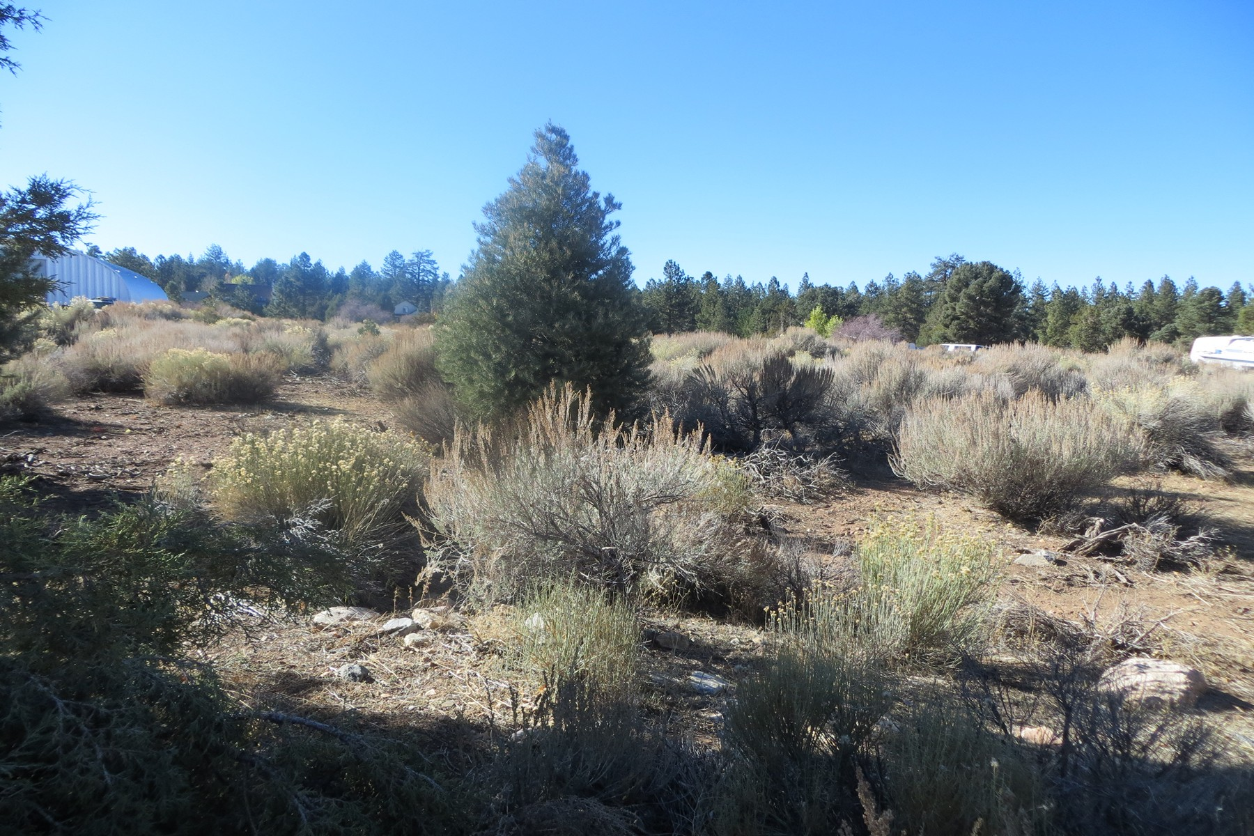 Land for Sale at 1175 Hatchery Big Bear City, California, 92314 United States