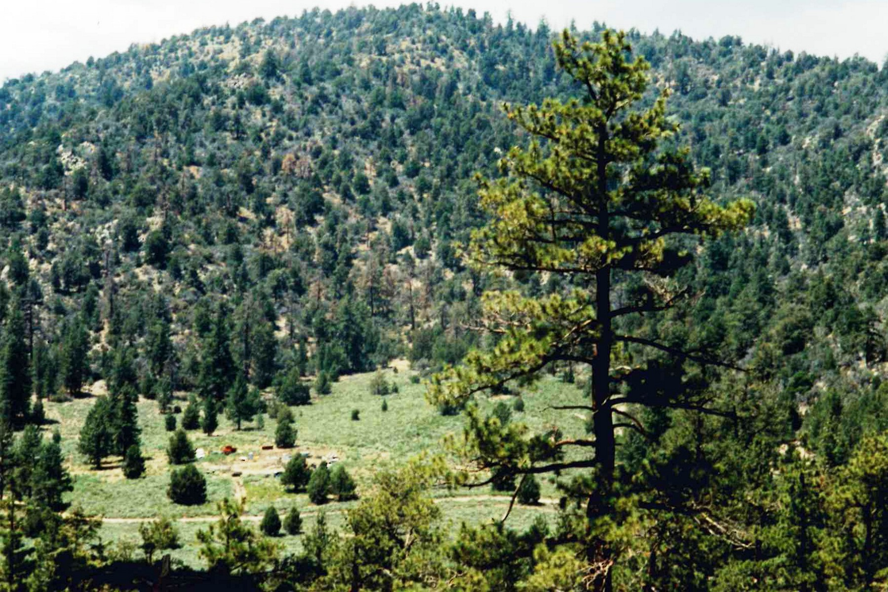 Land for Sale at Onyx Summit 0 Highway 38 Big Bear City, California 92314 United States