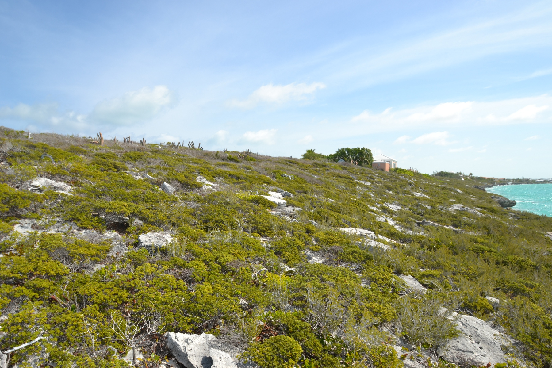 Additional photo for property listing at Oceanfront Land on Ocean Drive  Turtle Tail, Providenciales TCI Turks And Caicos Islands