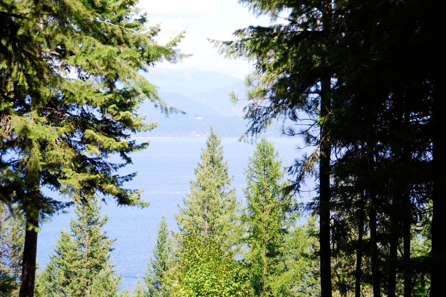 Land for Sale at Sourdough Point Homesite NNA Blue Grouse Road Sagle, Idaho 83860 United States