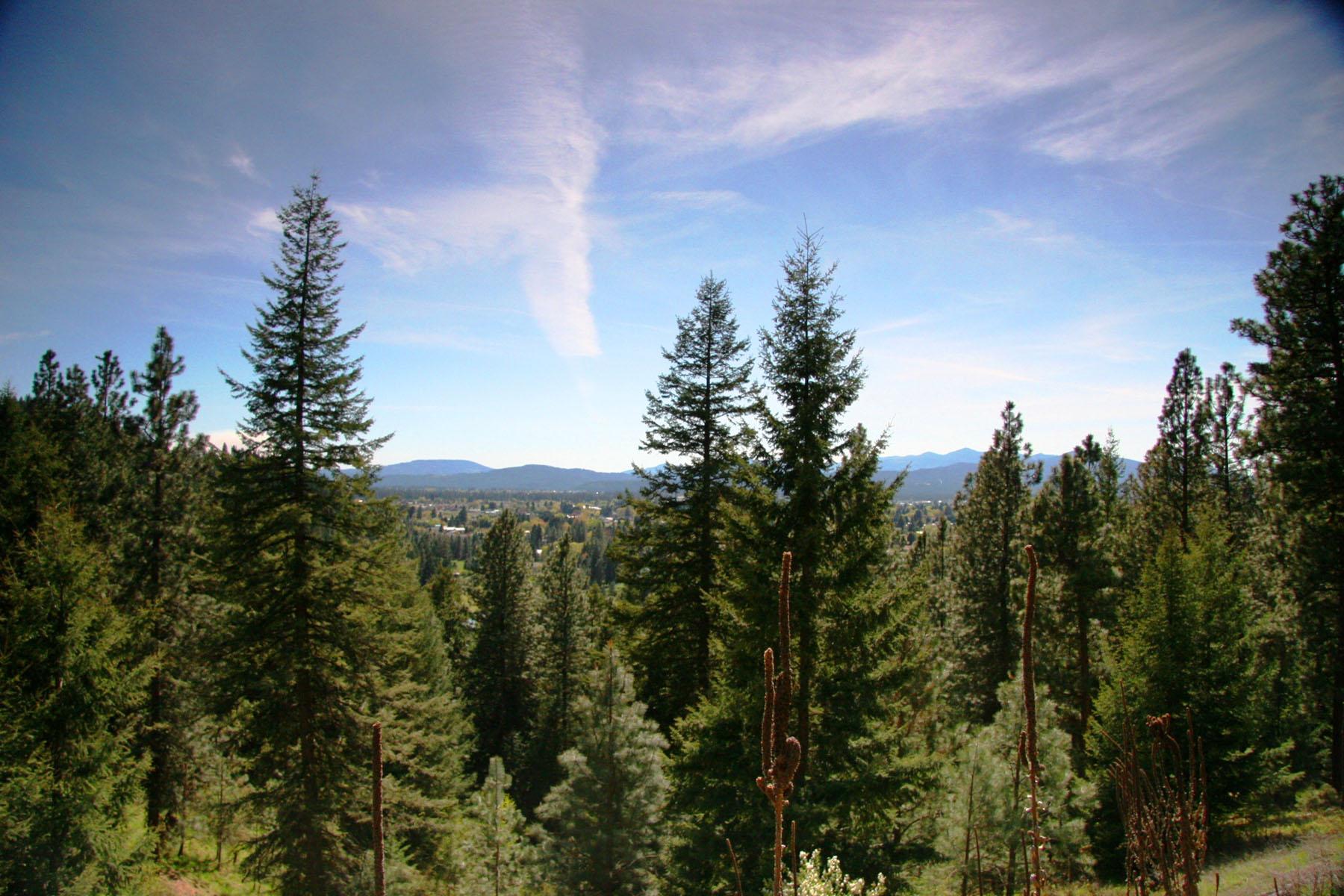 Arazi için Satış at This is spectacular 2.74 acres in Hayden! NNA 2.7 E Sundown Dr Hayden, Idaho, 83835 Amerika Birleşik Devletleri