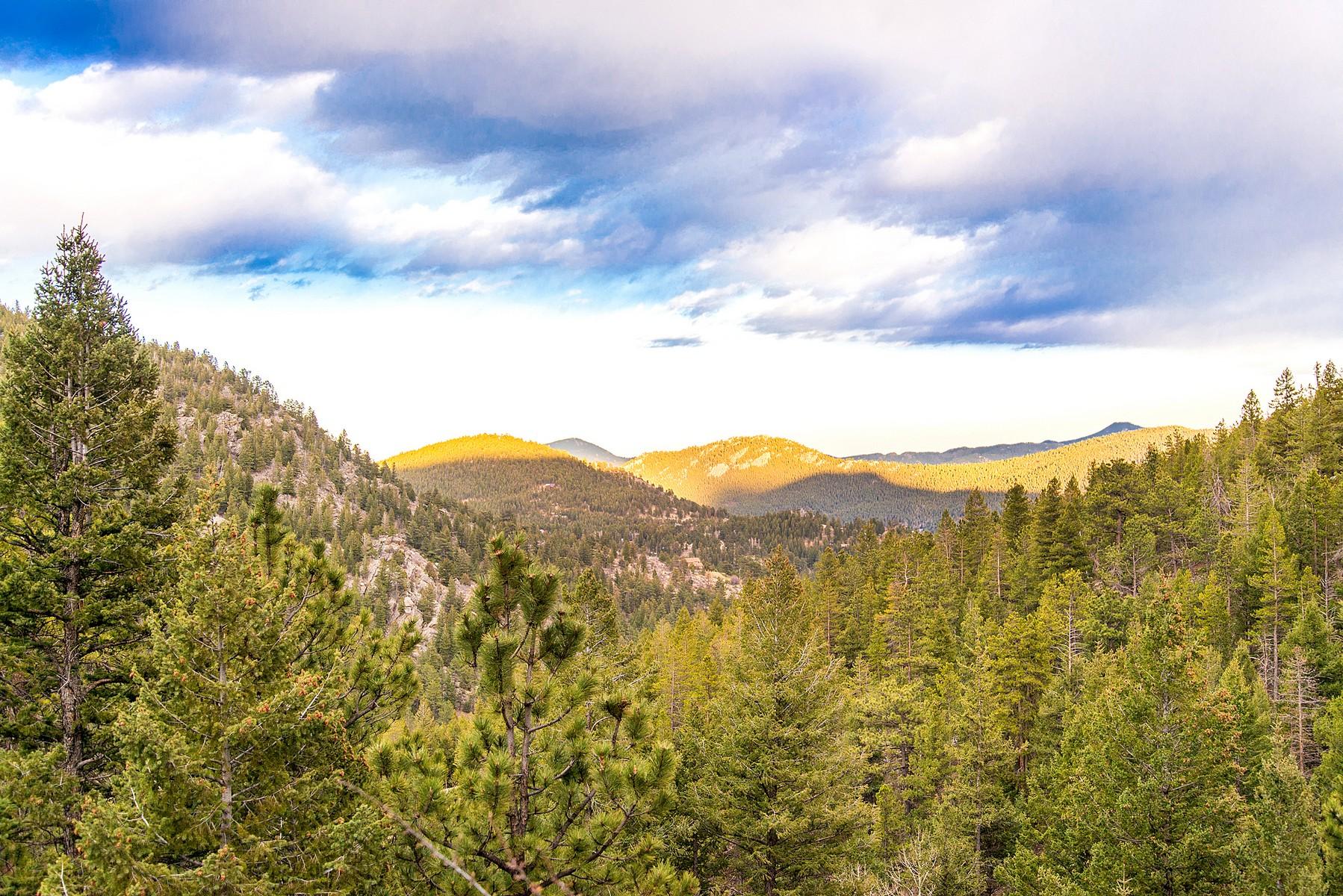 土地 のために 売買 アット Private Setting with Stunning Mountain Views 411 Blue Spruce Drive Evergreen, コロラド, 80439 アメリカ合衆国