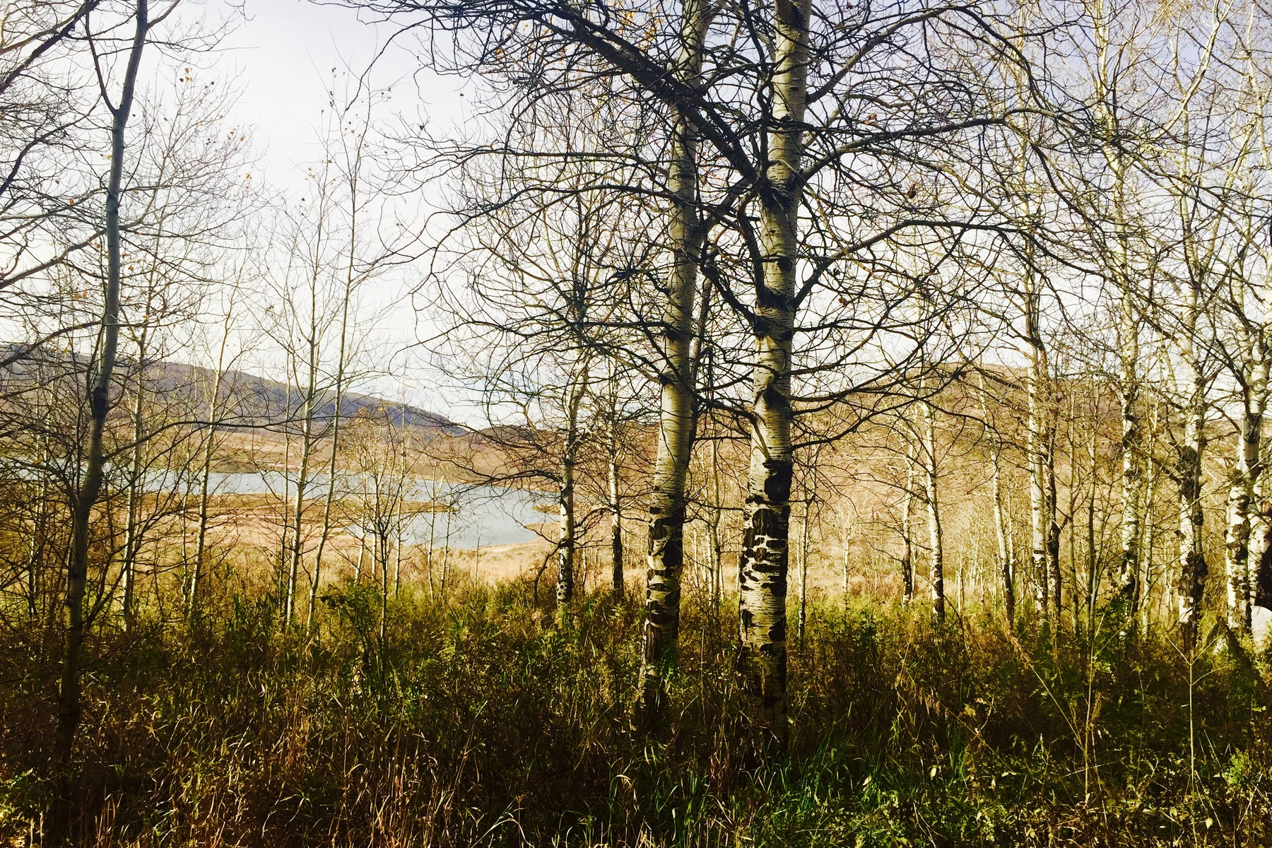 Land for Sale at Southshore Lot in Stagecoach 23895 Arapahoe Road Steamboat Springs, Colorado 80487 United States