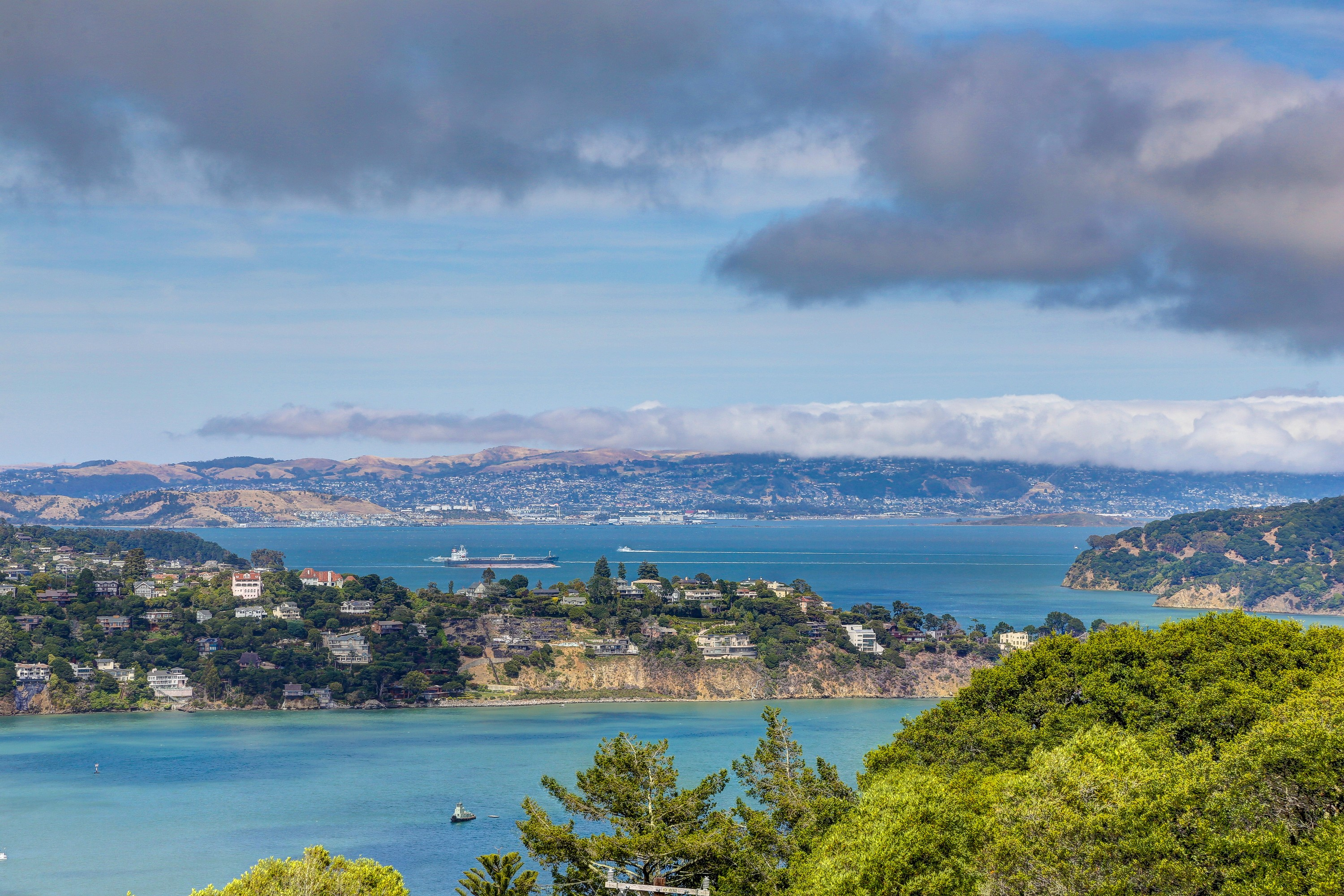 sales property at Sausalito Art Collector's Dream Home