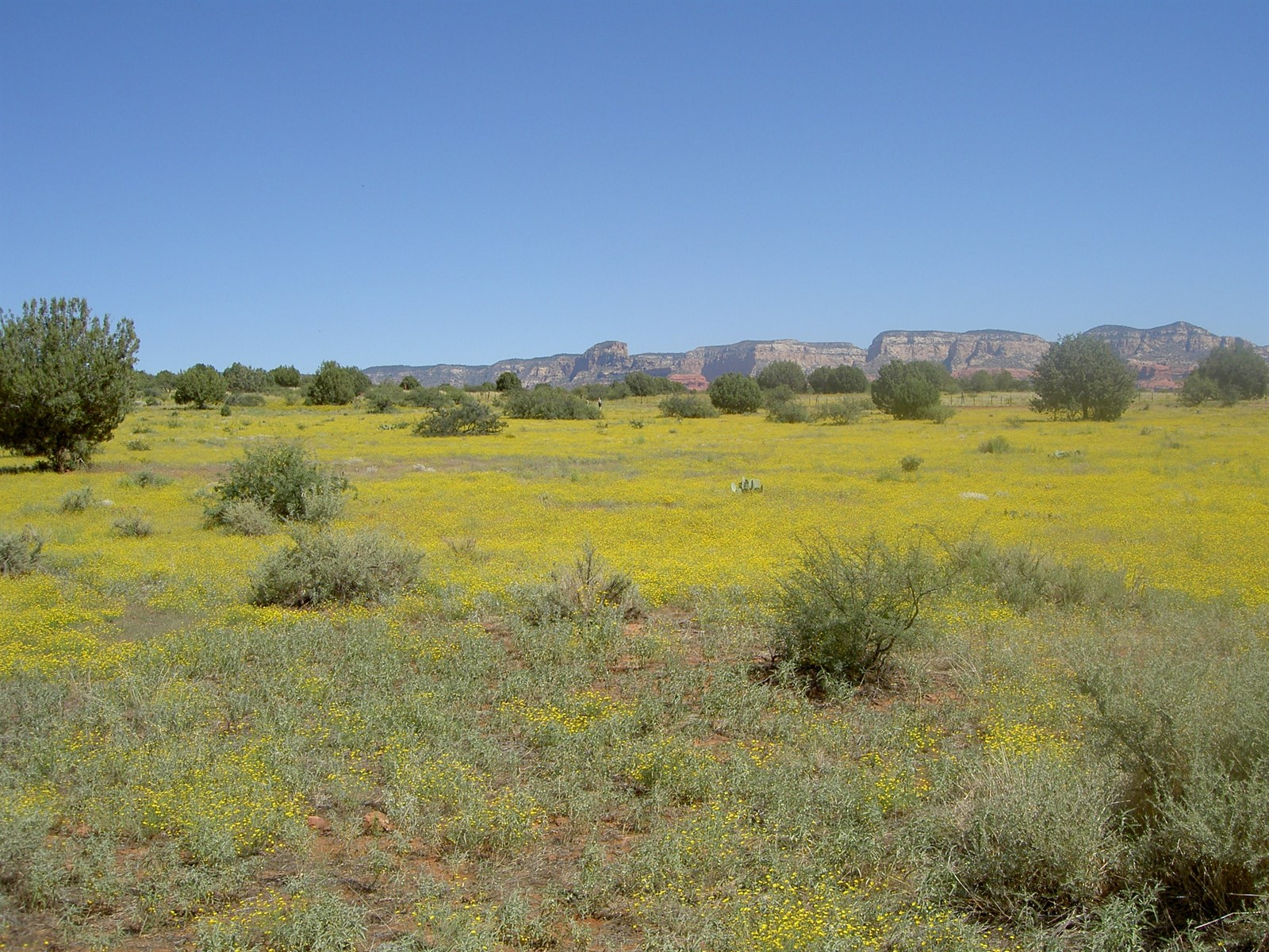 Land for Sale at Room to Roam 2 Big Acre Tomahawk Pass Sedona, Arizona 86336 United States