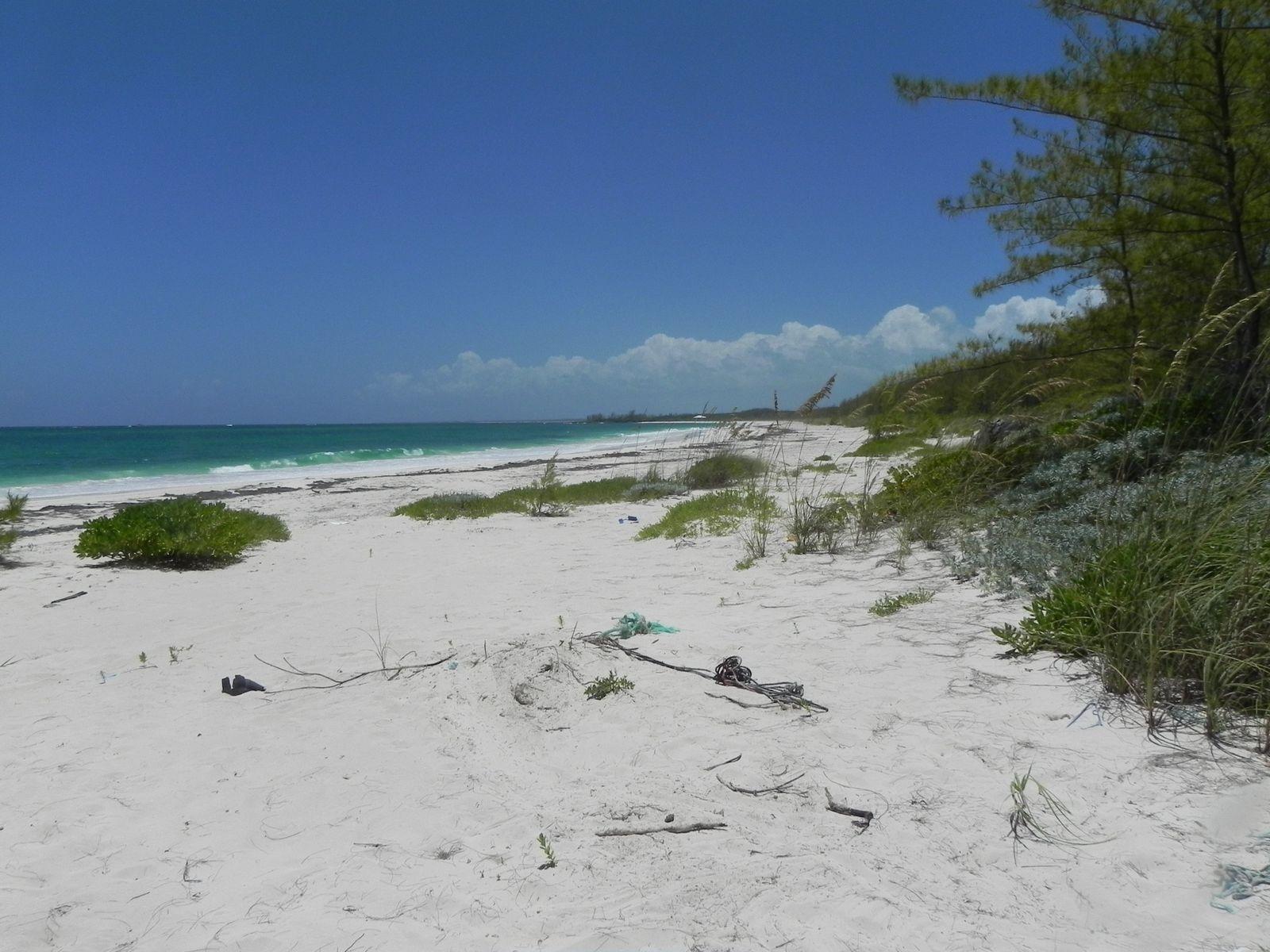 Terreno por un Venta en Bahama Palm Shores Lot 16 Bahama Palm Shores, Abaco Bahamas