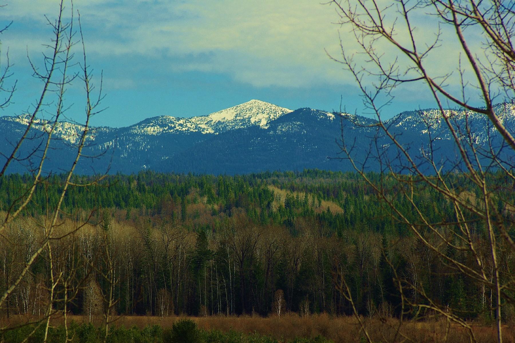 Autre résidentiel pour l Vente à Selle Valley Home on 30 Acres 311 Indigo Rd Sandpoint, Idaho 83864 États-Unis