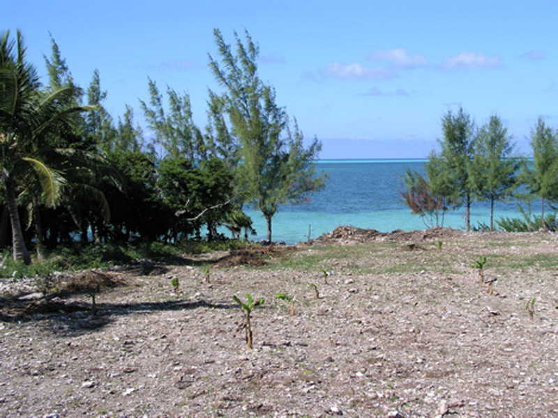 Additional photo for property listing at Ocean Front Lot Russell Island Spanish Wells, Eleuthera Bahamas