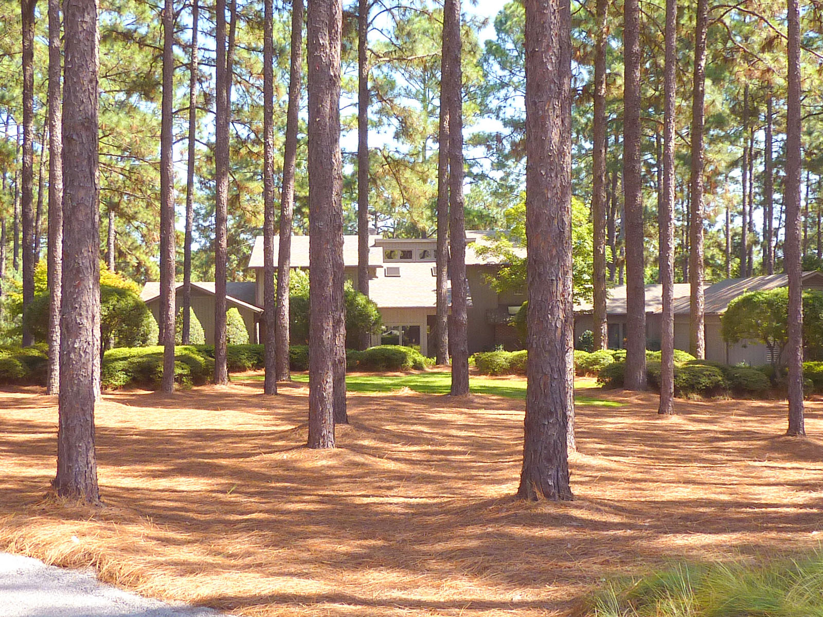 Property For Sale at 235 Lake Dornoch Drive