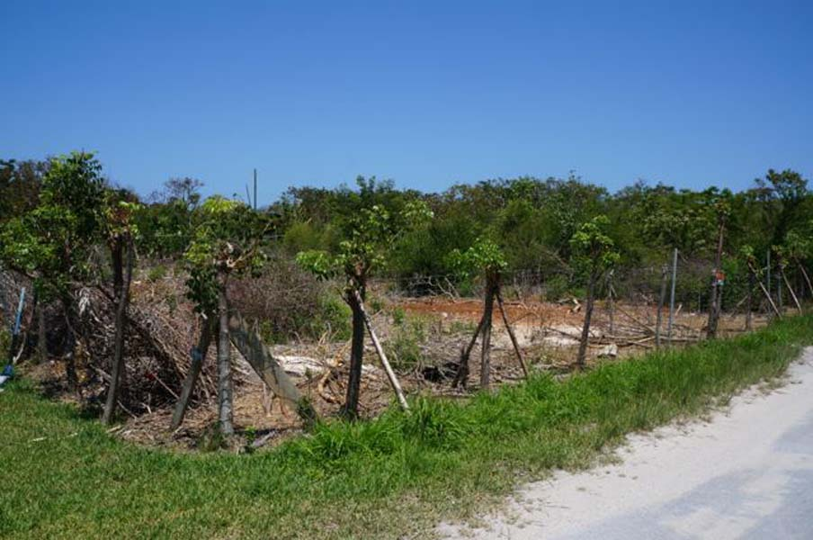 Land for Sale at Lots D & E Spanish Wells, Eleuthera Bahamas