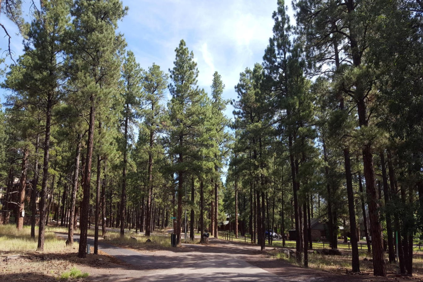 sales property at Rare opportunity to own .44 of an acre in Flagstaff