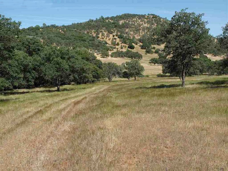 Property For Sale at Prime Ranch Land