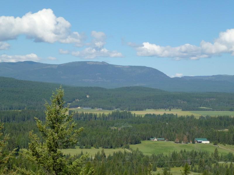 Đất đai vì Bán tại 40 Pristine Acres North of Whitefish 555 Tamarack Creek Road Whitefish, Montana 59937 Hoa Kỳ