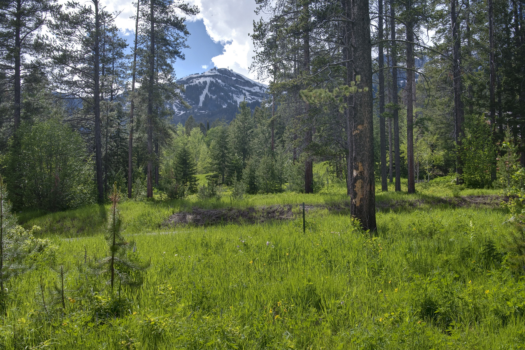 Земля для того Продажа на Granite Ridge Homesite 7730 N Lower Granite Ridge Rd Teton Village, Вайоминг 83025 Соединенные Штаты