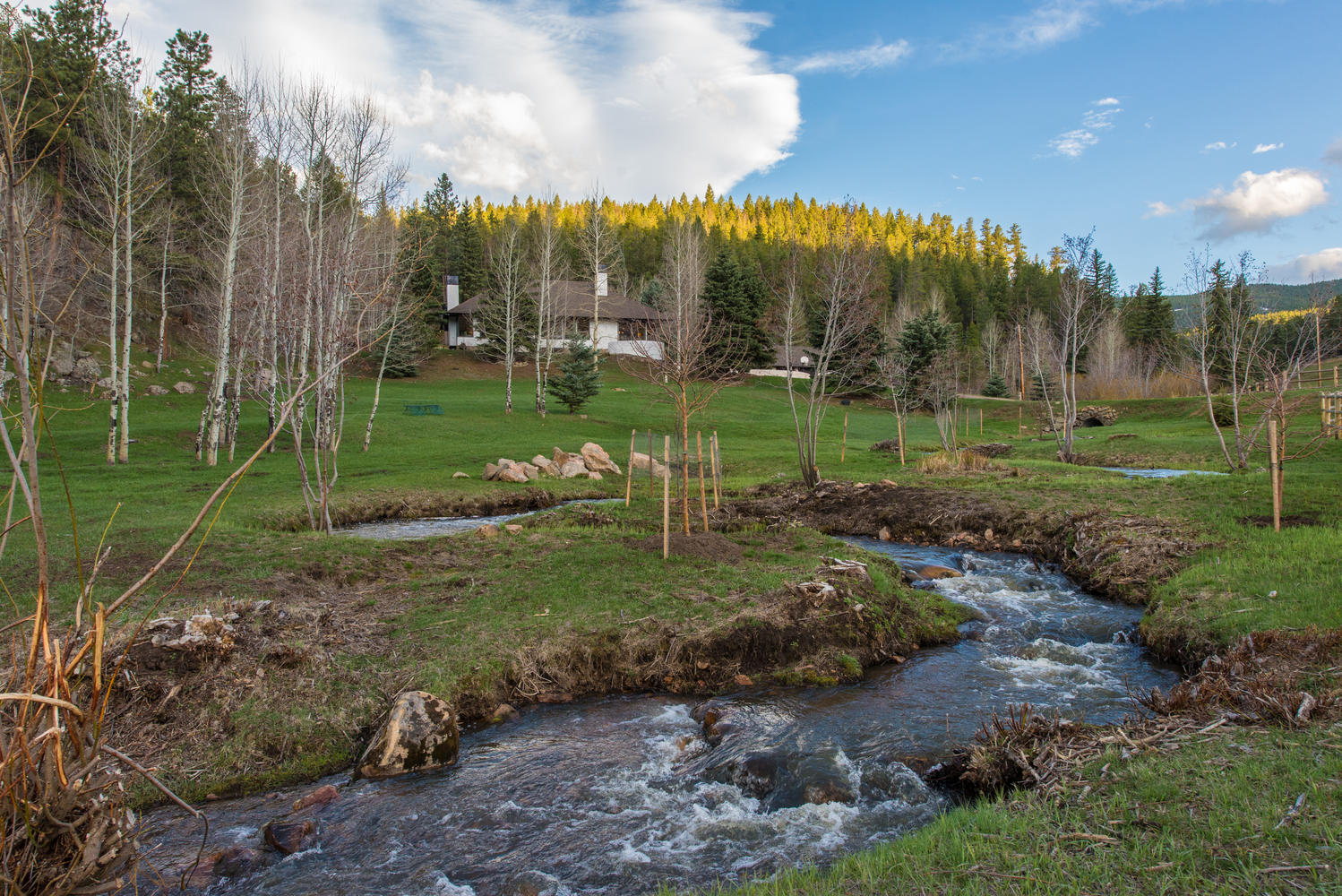 Moradia para Venda às 1158 Yankee Creek Road Evergreen, Colorado, 80439 Estados Unidos
