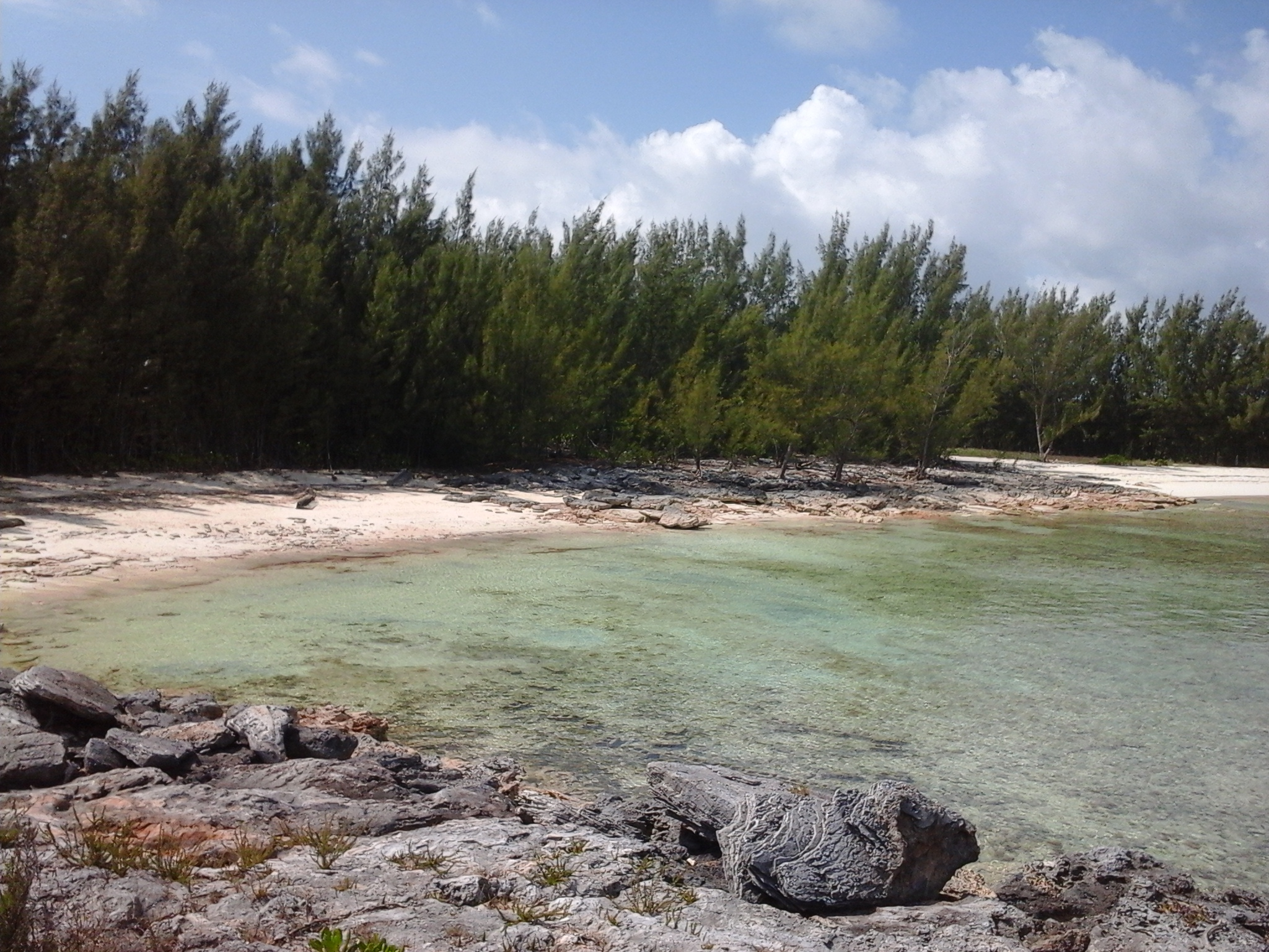Additional photo for property listing at Lot C Turtle Rocks West Treasure Cay, 阿巴科 巴哈马