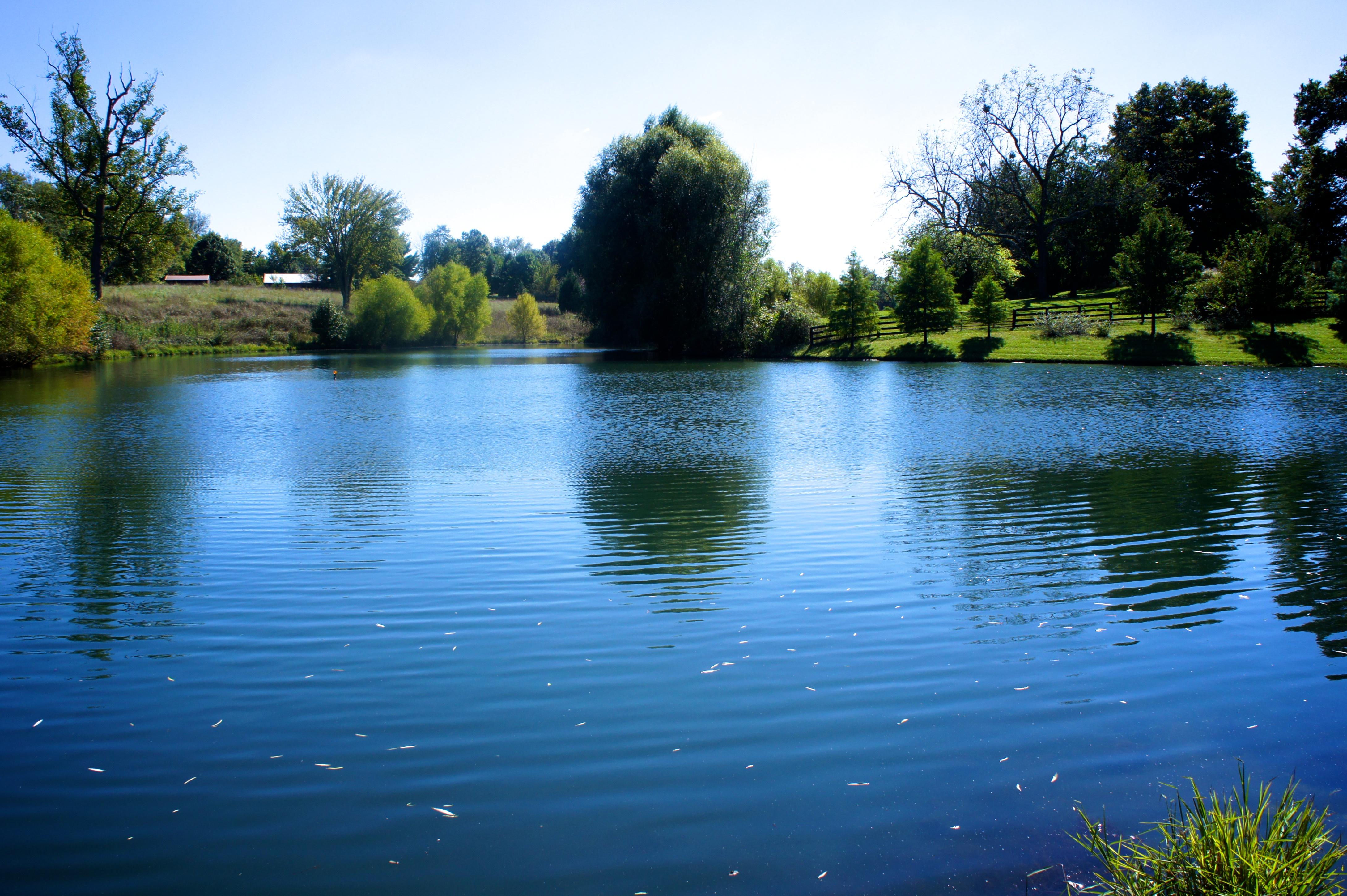 Земля для того Продажа на 5 Spring Farm Road Prospect, Кентукки 40059 Соединенные Штаты