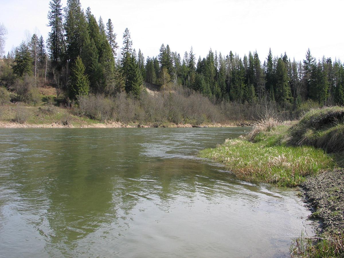 Land für Verkauf beim Spectacular 33+ acre Riverfront Parcel NNA 33.2 PENINSULA LOOP RD Priest River, Idaho 83856 Vereinigte Staaten