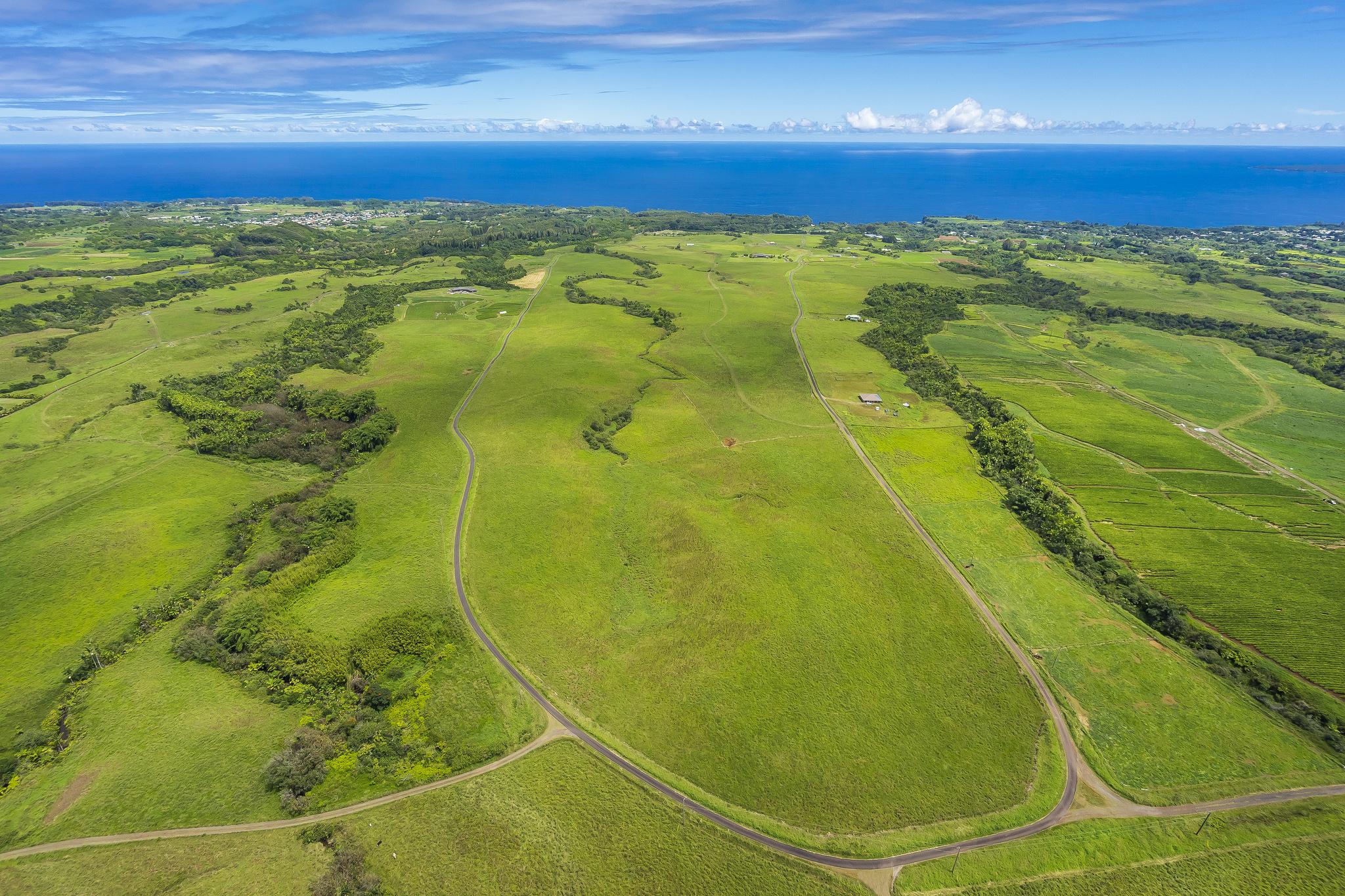 Land für Verkauf beim Onomea Bay Ranch Onomea Bay Ranch Lot # 24-B6 Papaikou, Hawaii 96781 Vereinigte Staaten