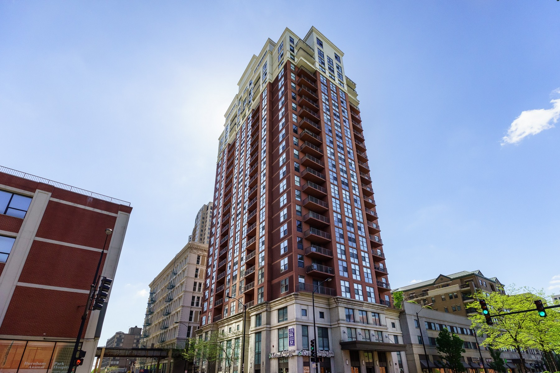 sales property at Amazing Opportunity in the South Loop