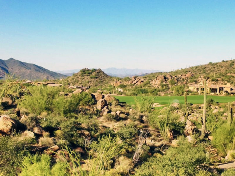 Property For Sale at Saguaro Forest Golf Course Homesite