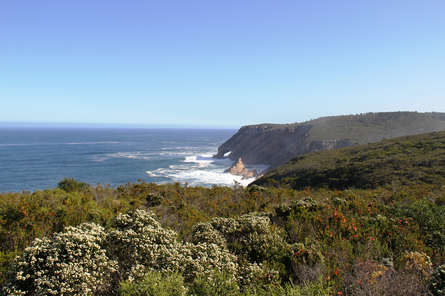 Terrain pour l Vente à Coastal Champion Plettenberg Bay, Cap-Occidental, 6600 Afrique Du Sud