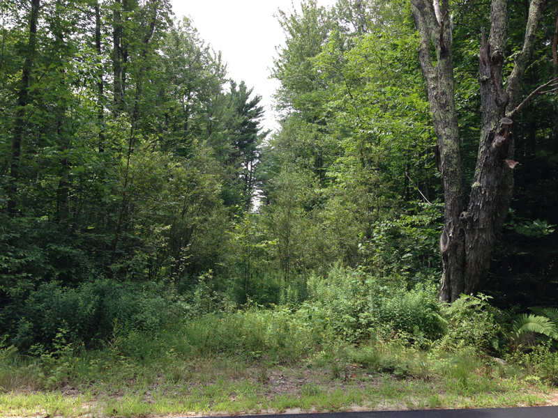 Land for Sale at Parcel B, Town Farm Road North Yarmouth, Maine 04097 United States