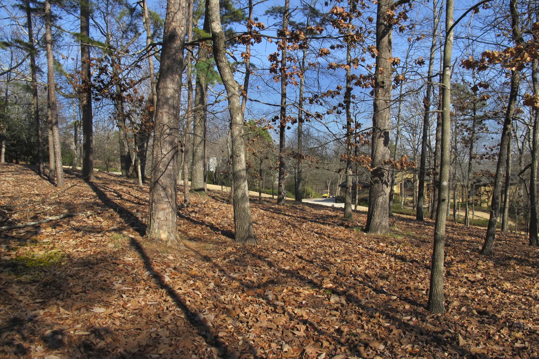 Terreno por un Venta en Amazing 4.358 Acres 8945 Old Southwick Pass Atlanta, Georgia, 30022 Estados Unidos