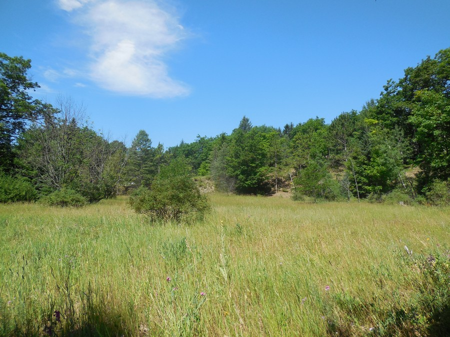 地產 為 出售 在 Summit Street Land Harbor Springs, 密歇根州, 49740 美國
