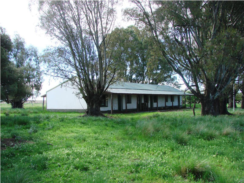 Property For Sale at Excelent Farm in Tornquist - Buenos Aires