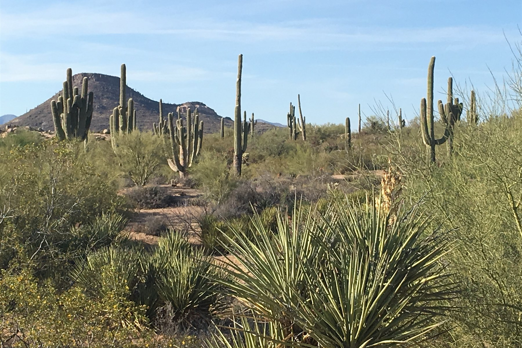 sales property at Spectacular Troon North Custom Homesite