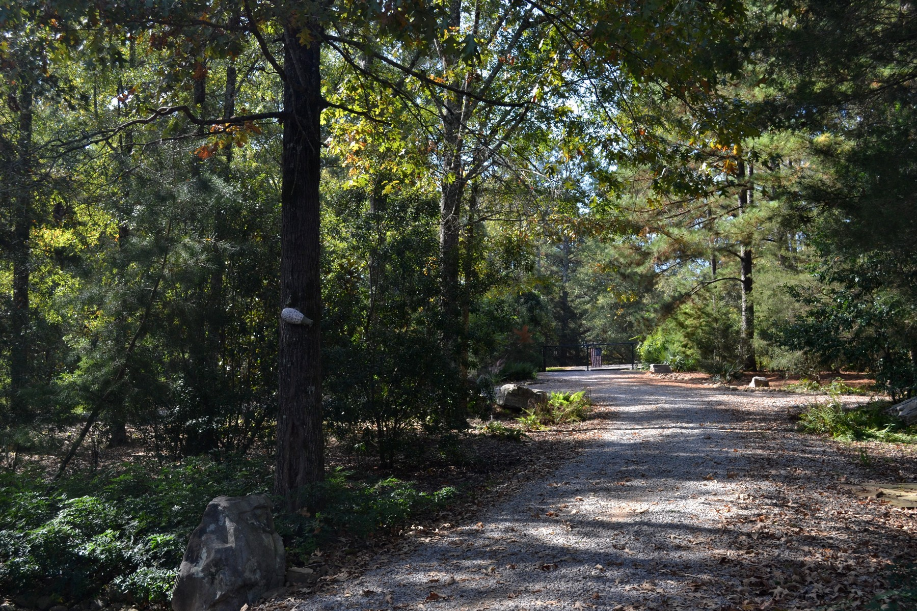Additional photo for property listing at 9958 Highway 501  Forest, Mississippi 39074 United States