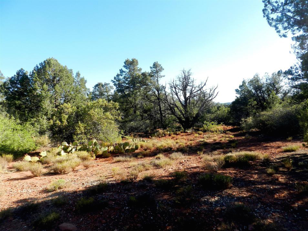 土地 为 销售 在 Quiet Cul-de-sac Lot 3075 Thunder Mountain Rd Sedona, 亚利桑那州 86336 美国