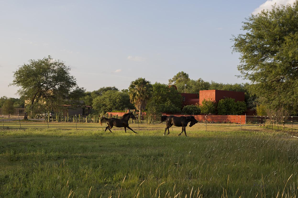 獨棟家庭住宅 為 出售 在 Rancho Granja las Animas San Miguel De Allende, Guanajuato, 37700 墨西哥