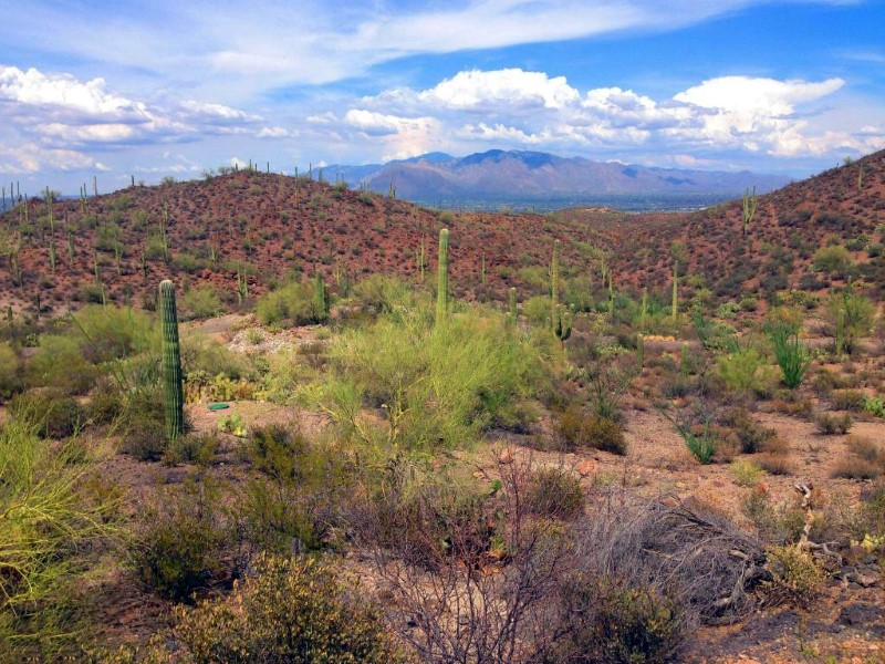 Земля для того Продажа на Stunning Views From This Private Gated Tucson Mountains 3+ Acre Lot 3825 N Avenida Dos Vistas Tucson, Аризона 85745 Соединенные Штаты