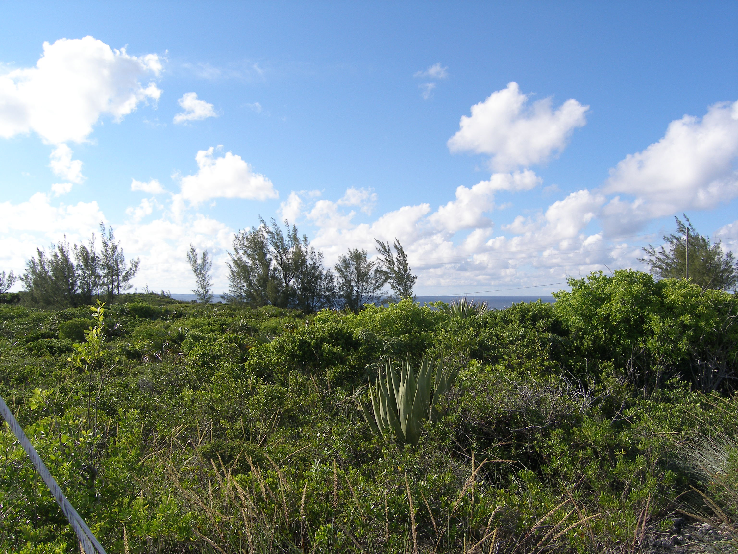Land for Sale at Lot 51, Block 19, Section B Rainbow Bay, Eleuthera Bahamas