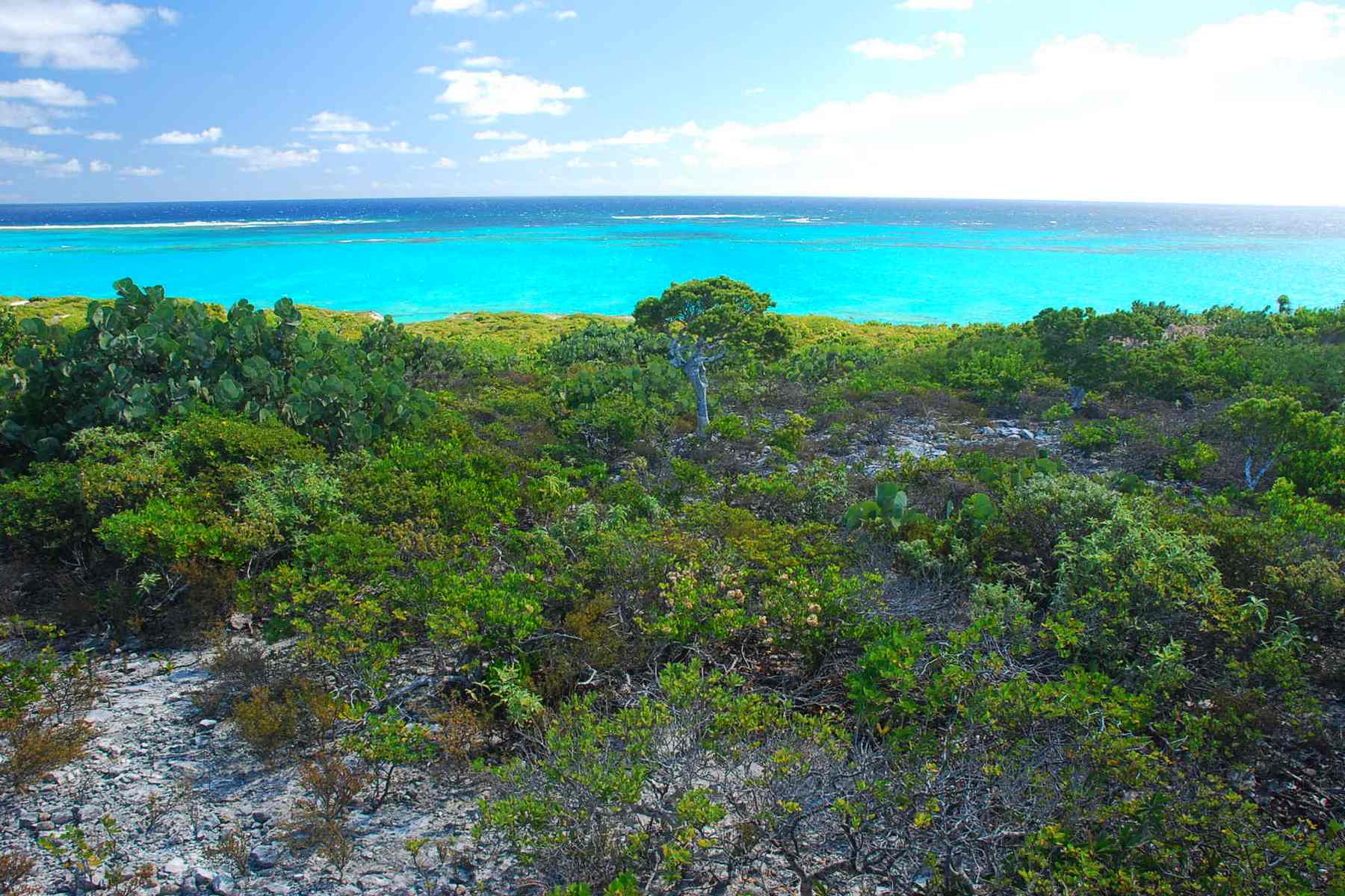 Additional photo for property listing at Oceanfront Lot 2208 Sailrock, South Caicos Islas Turcas Y Caicos